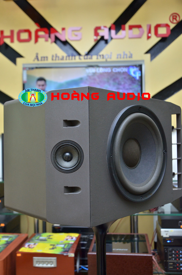 DSC 66441 Loa Bose 301 Seri IV