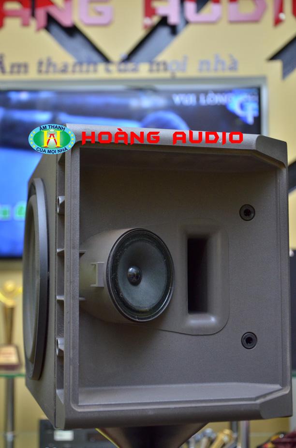 DSC 66451 Loa Bose 301 Seri IV