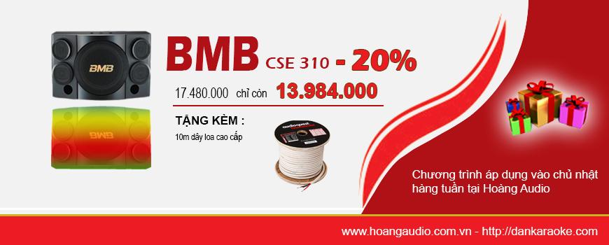 loa-bmb-CSE-310