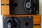 Loa Bose 6.2