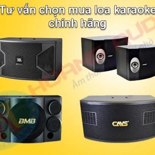 Chọn mua loa karaoke hát hay nhất cho dàn karaoke gia đình