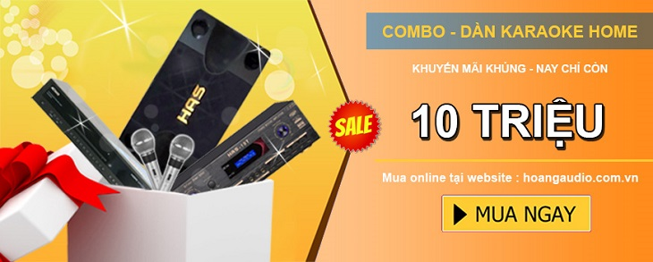 dan-karaoke-gia-dinh-10-triẹu-730-300
