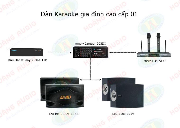 dan-karaoke-cao-cap-ho-01